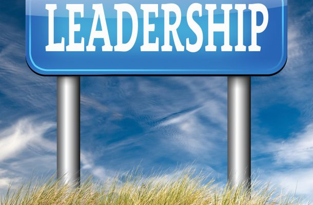 natural leader great leadership in business and other markets ro